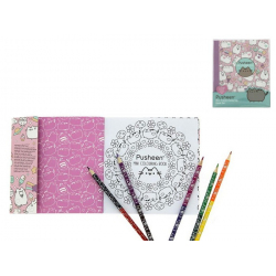 SET ALBUM DA COLORARE C MATITE PUSHEEN 2